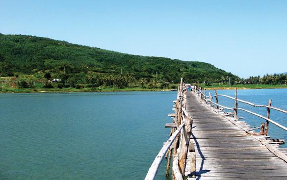 Sông Cầu, thị xã dừa