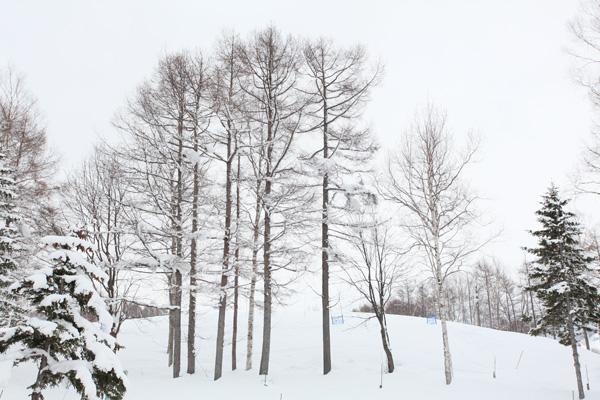Tận hưởng mùa đông xứ tuyết Hokkaido-10