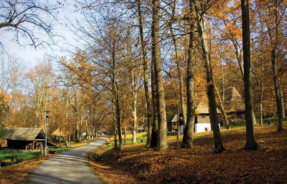 Cao nguyên Transylvania, một vùng cổ tích Rumani -3
