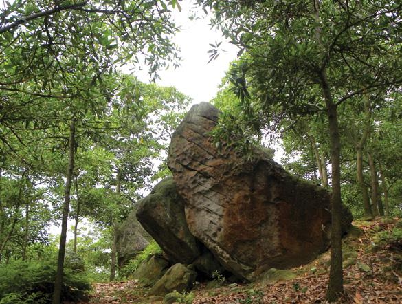 Về miền đất Phật Bổ Đà - 7