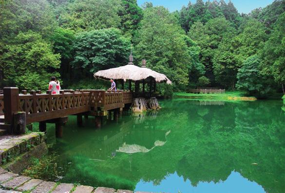 Rừng núi tươi đẹp ở Đài Loan -6