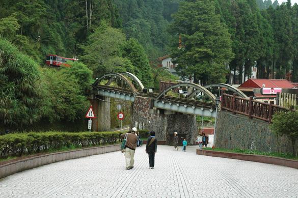 Rừng núi tươi đẹp ở Đài Loan -2