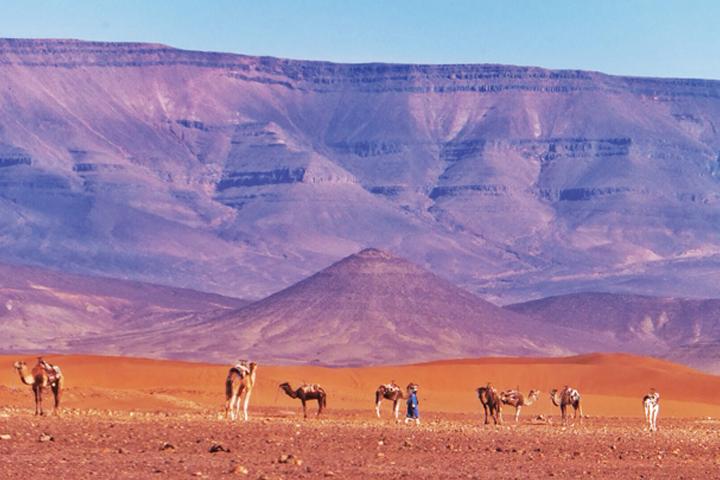 Những vẻ đẹp chỉ có ở Sahara -6