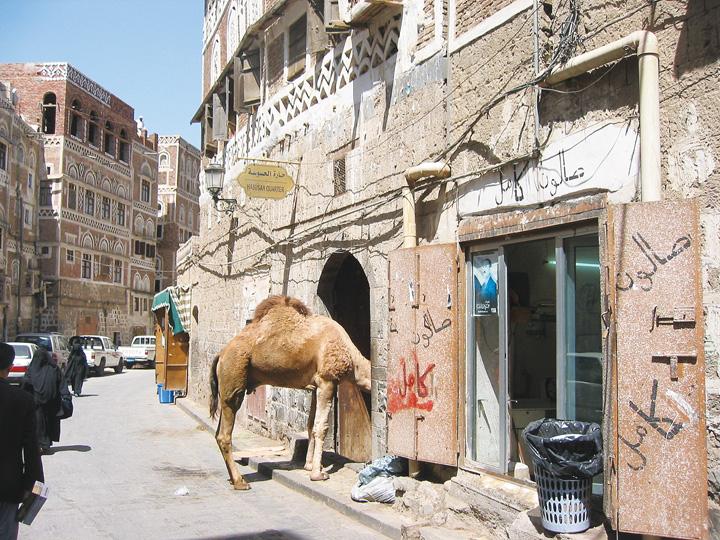 Đời sống trong khu phố cổ Aden