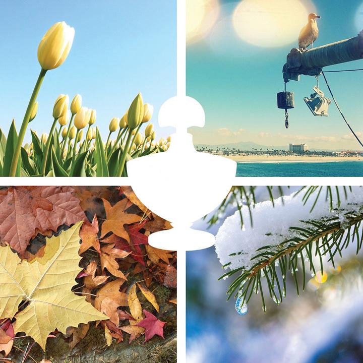 Chọn nước hoa theo từng mùa trong năm2