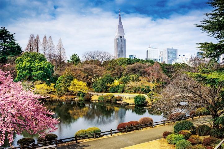 Shinjuku Gyoen Park