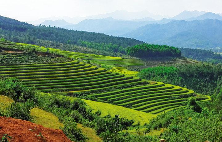 Quang-Ninh-PSA-705-2017-7