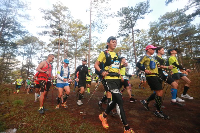 Kết quả hình ảnh cho chạy marathon tại đà lạt