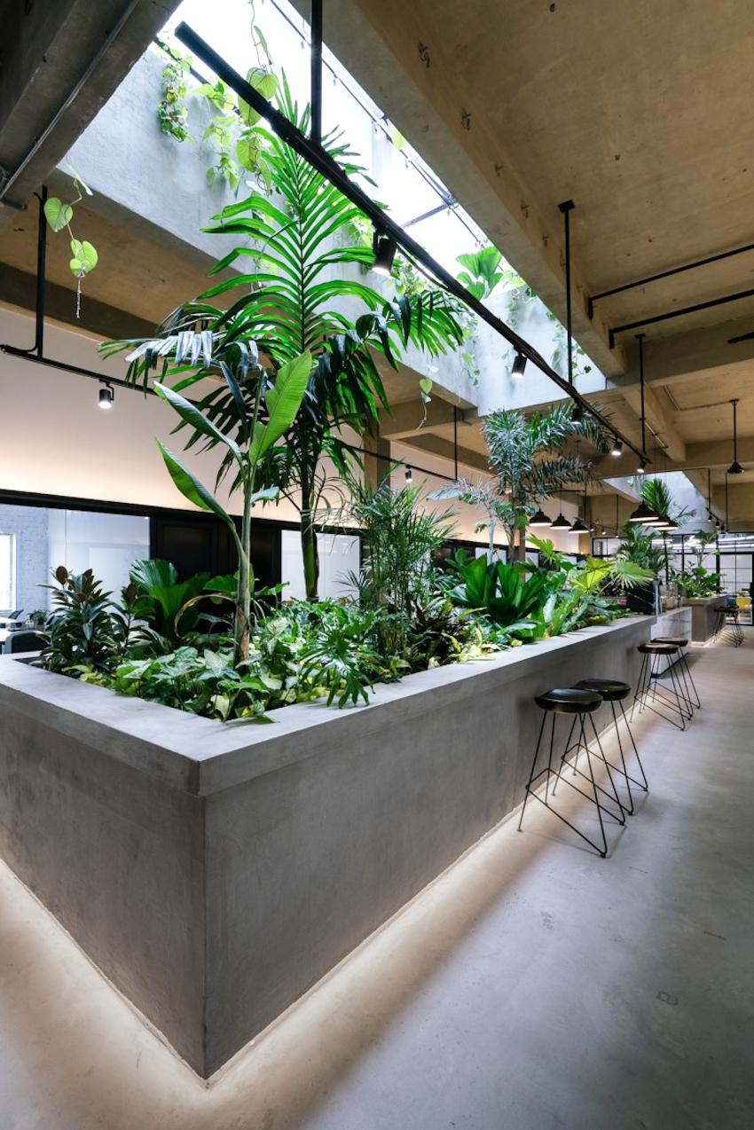 Jungle Station - không gian làm việc xanh mát giữa lòng thành phố
