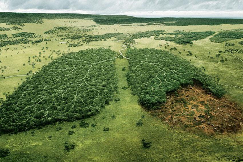 Hệ sinh thái châu Á - Thái Bình Dương xuống cấp nghiêm trọng