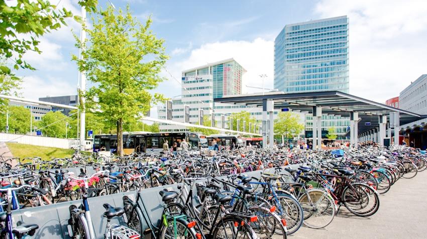 6 vùng đất lý tưởng cho tour du lịch bằng xe đạp