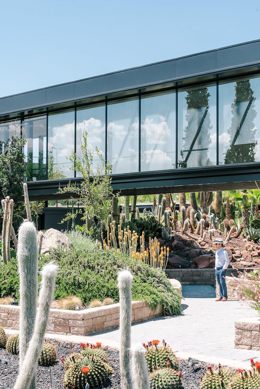Tham quan không gian độc đáo Nhà trưng bày xương rồng - Garciagerman Arquitectos