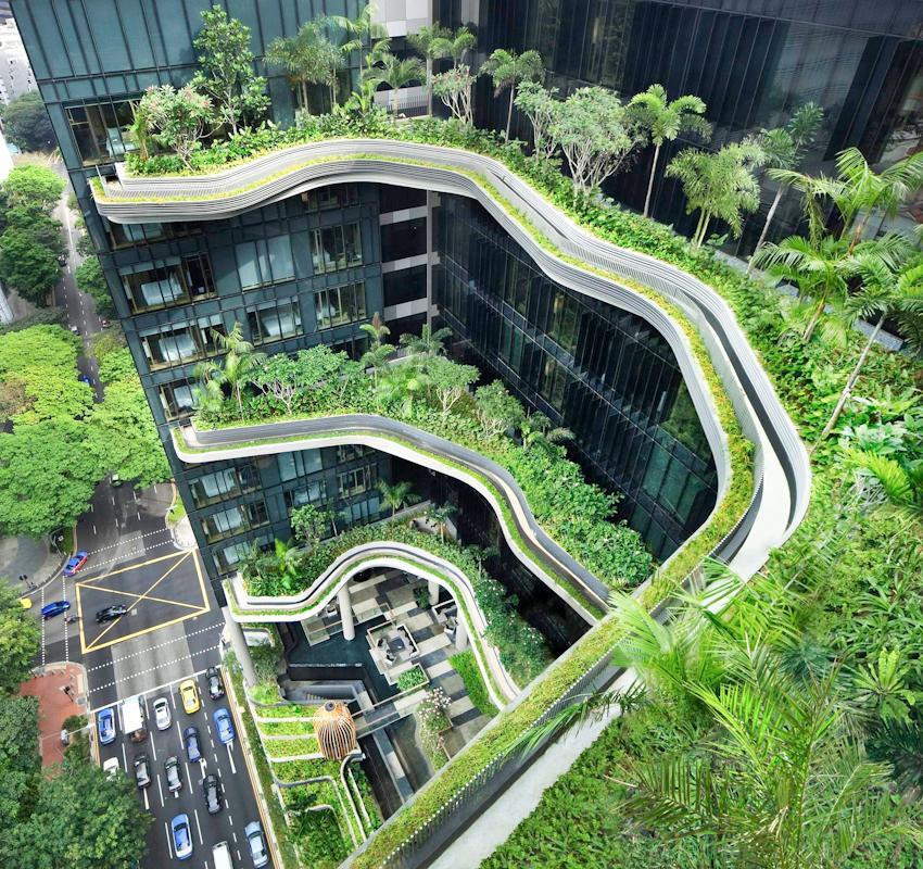 Xu hướng thiết kế Biophilic Design - Sống cùng với thiên nhiên
