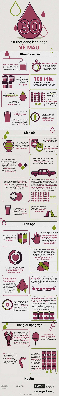 [Infographic] 30 sự thật bất ngờ về máu có thể bạn chưa biết