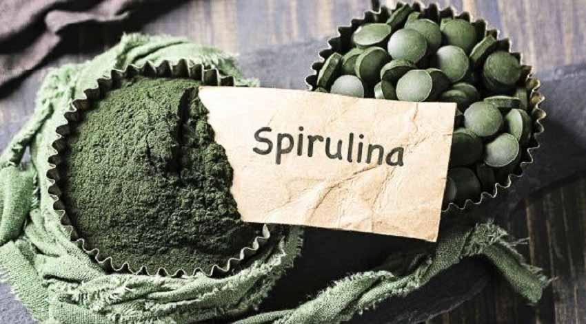 Những tác dụng phụ gây sốc của tảo Spirulina với sức khỏe