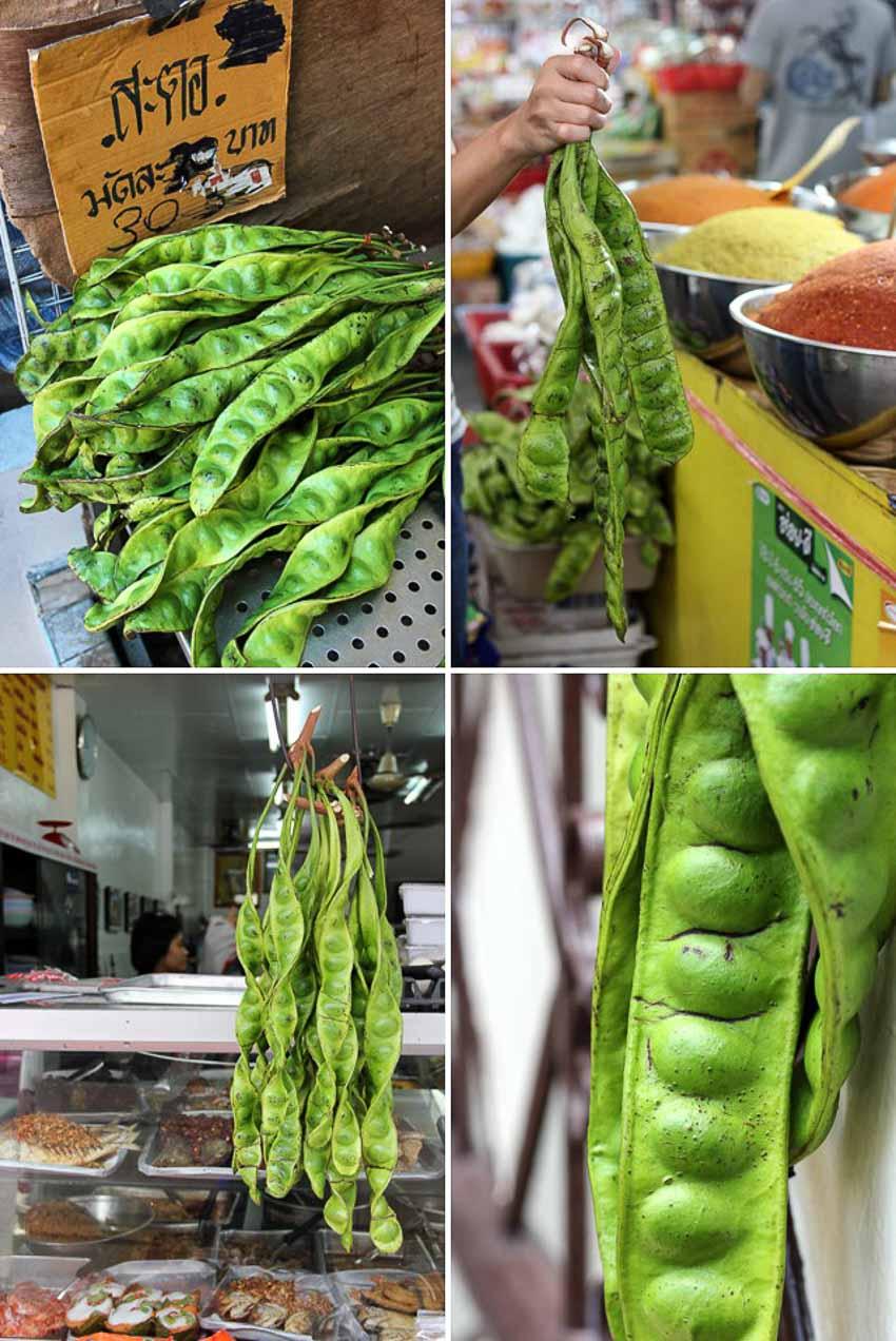 Đậu Parkia Speciosa - loại đậu thách thức tâm lý người ăn 2