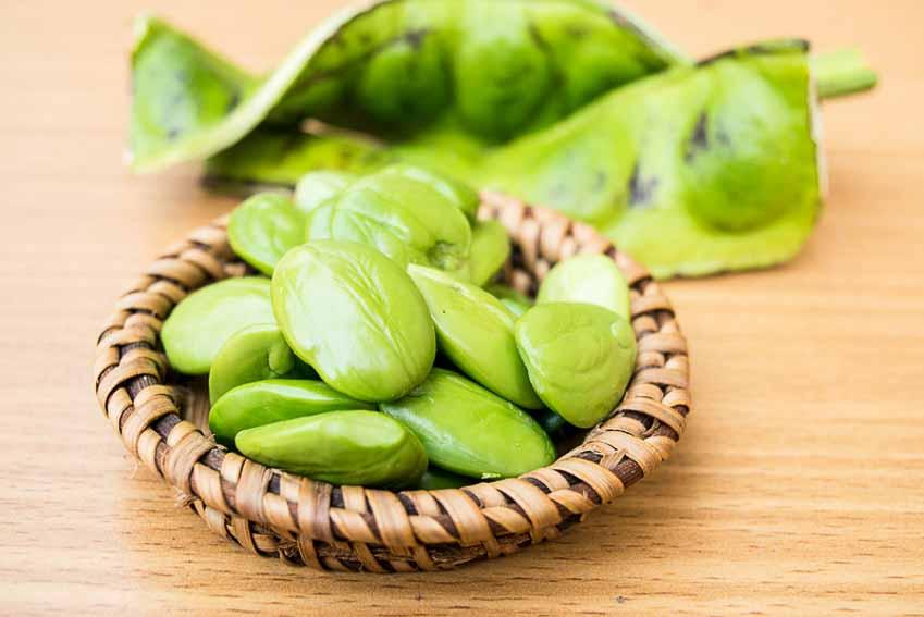 Đậu Parkia Speciosa - loại đậu thách thức tâm lý người ăn 9