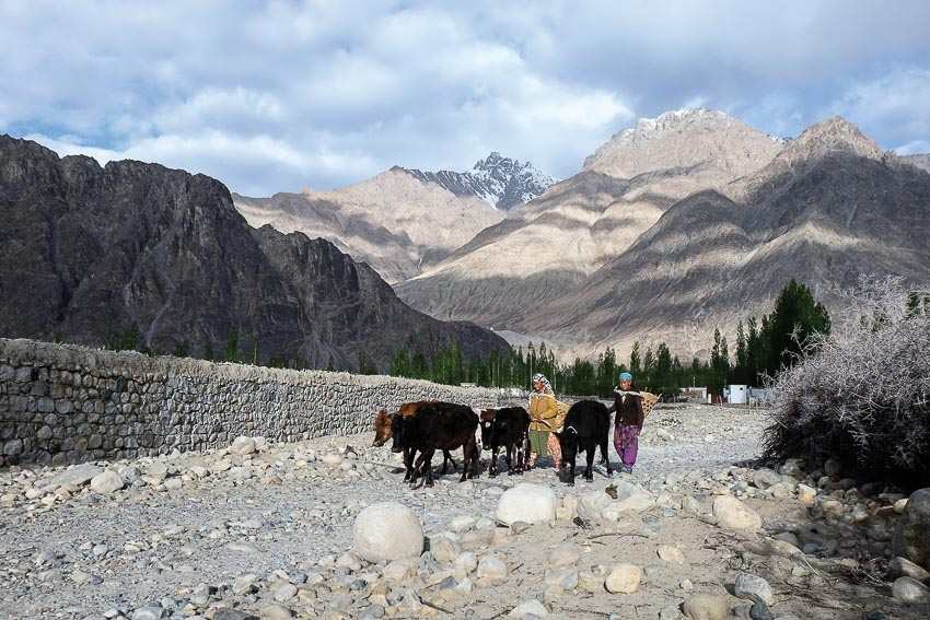 DNP775-lac-vao-dao-thien-duong-Ladakh-4