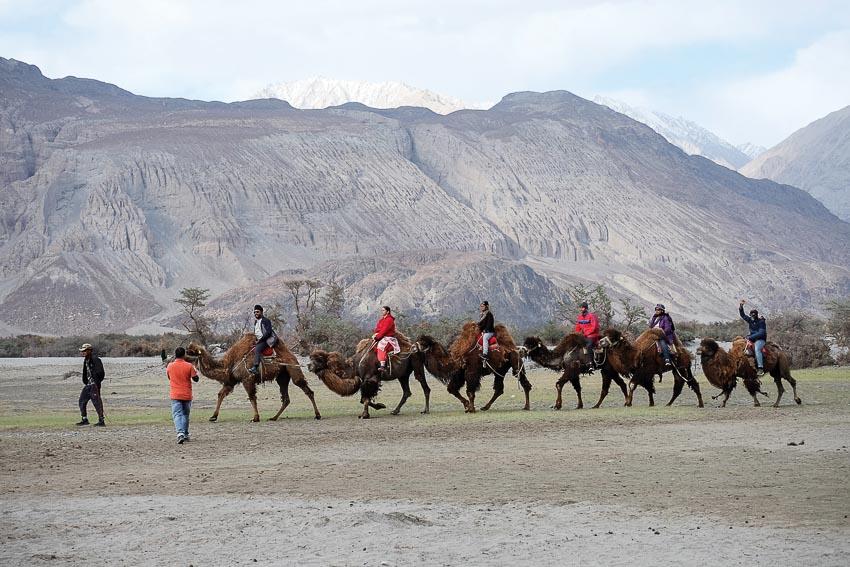 DNP775-lac-vao-dao-thien-duong-Ladakh-6