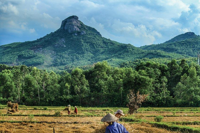 len-rung-xuong-bien-o-Nui-Thanh-Quang-Nam-7