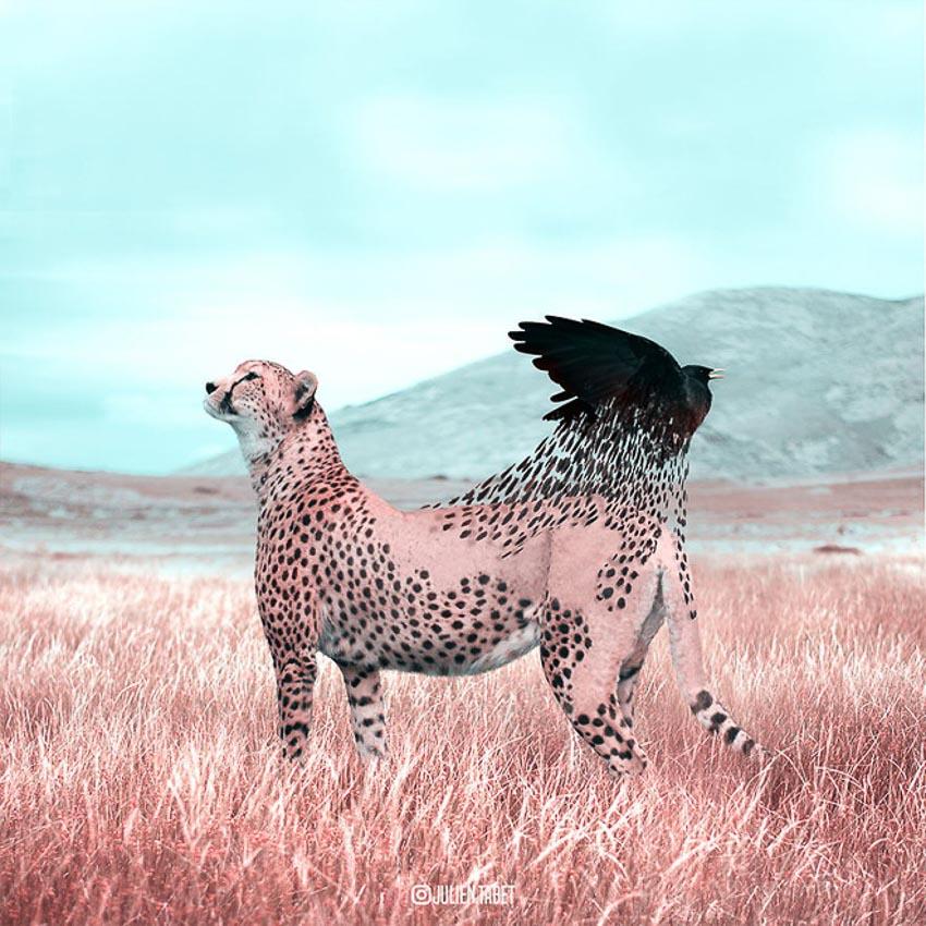 Ảnh động vật qua photoshop 10