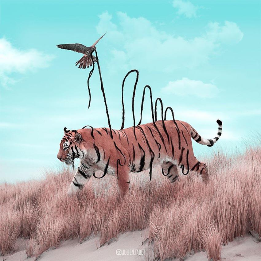 Ảnh động vật qua photoshop 13