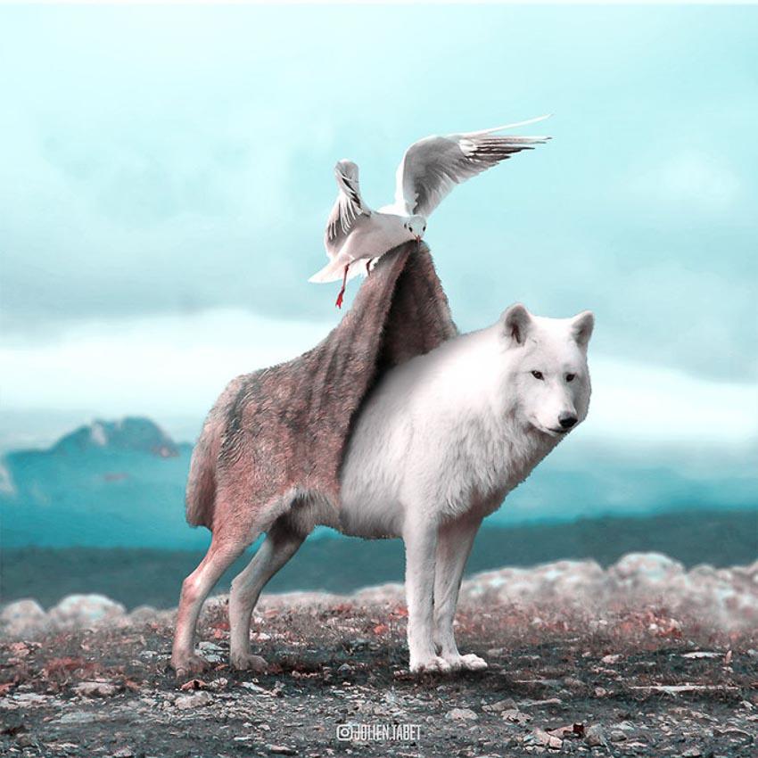Ảnh động vật qua photoshop 8