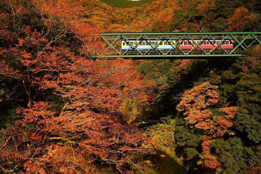 Núi Takao ở Tokyo 3