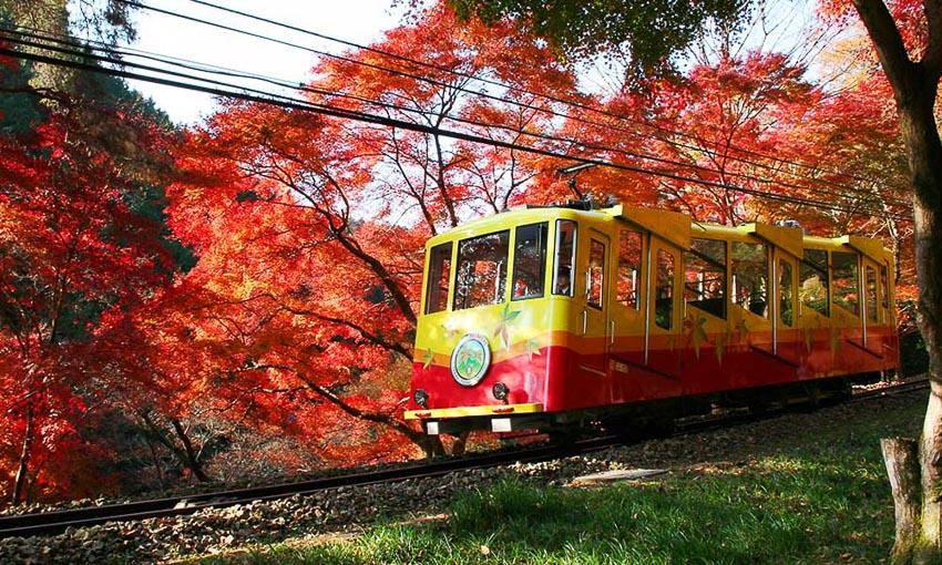 Núi Takao ở Tokyo 5