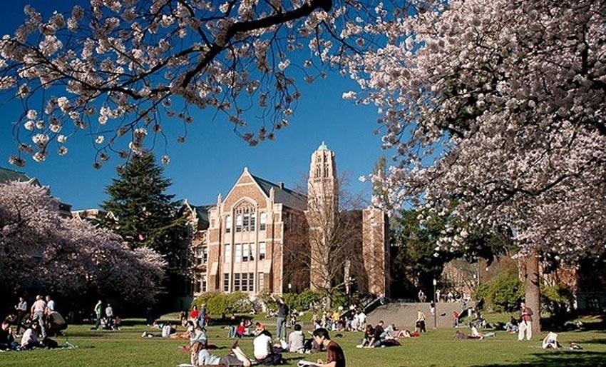 Top 10 trường đại học tốt nhất thế giới 10