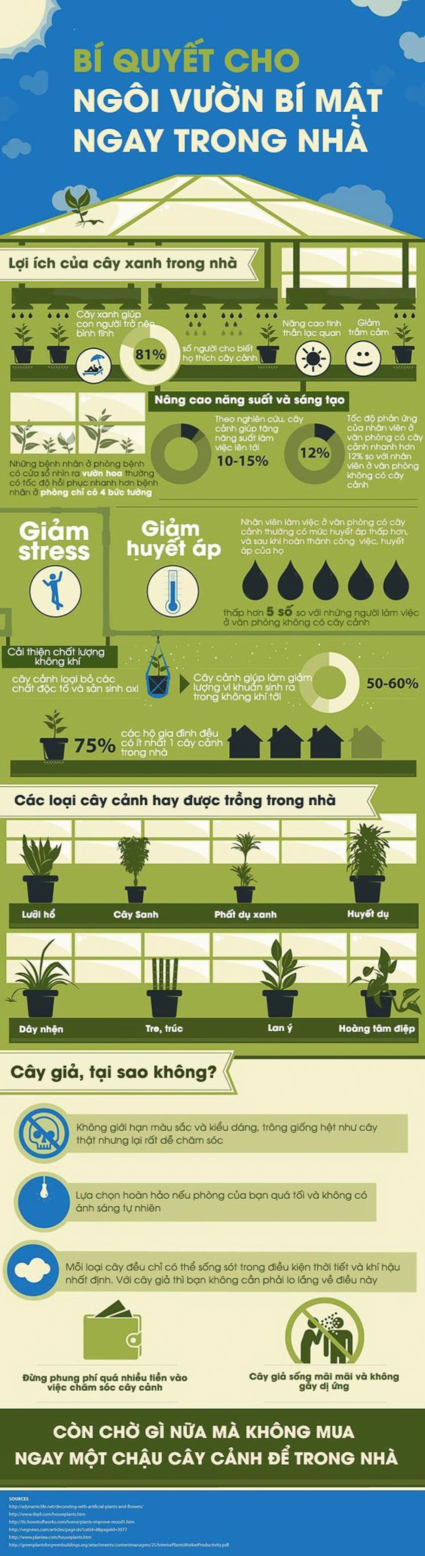 trồng cây xanh trong nhà 1