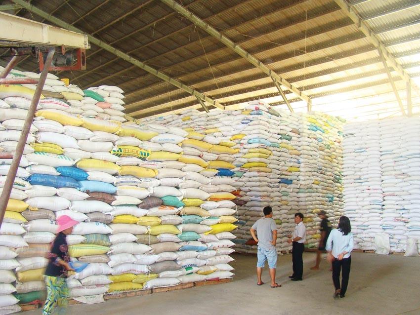 Hạt gạo Việt Nam bước đầu thâm nhập được các thị trường yêu cầu chất lượng cao