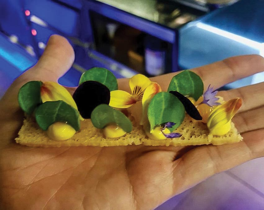 Bánh mì nướng phủ hoa mertensia maritime, hoa violet, hoa cúc và cánh hoa thanh cúc của bếp trưởng Christian Milone