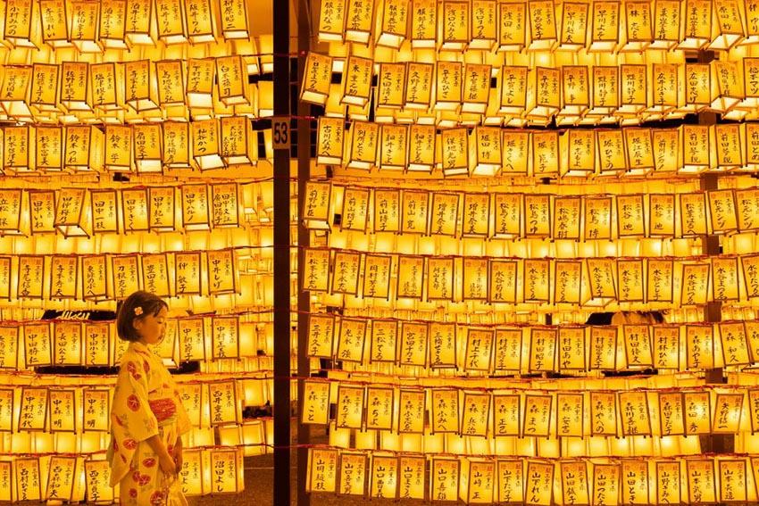Bức ảnh Phật tử cầu nguyện trong top 70 ảnh đẹp nhất năm của NatGeo 7