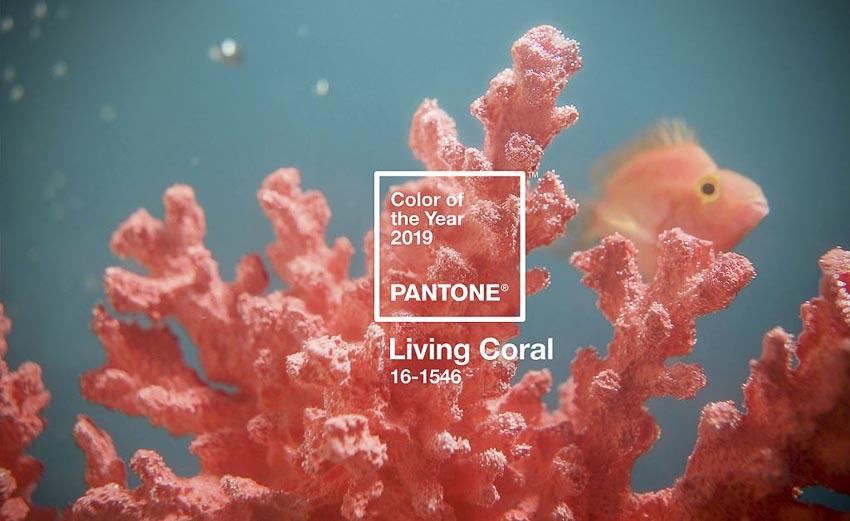 """Living coral – màu cam san hô sẽ là tông màu """"lên ngôi"""" năm 2019 1"""