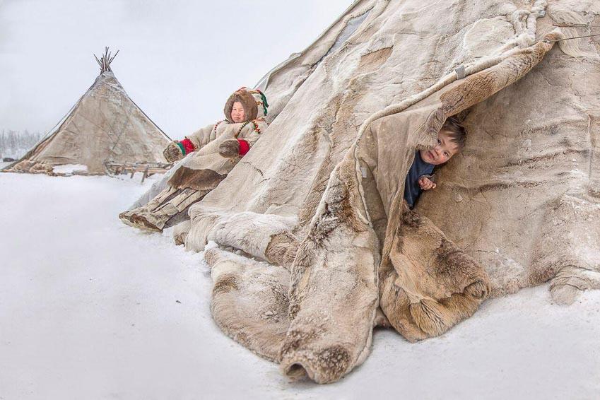 """""""Ngôi nhà di động"""" - lều ở của người địa phương được làm từ các nhánh cây và da tuần lộc trên bán đảo Yamal, Nga"""