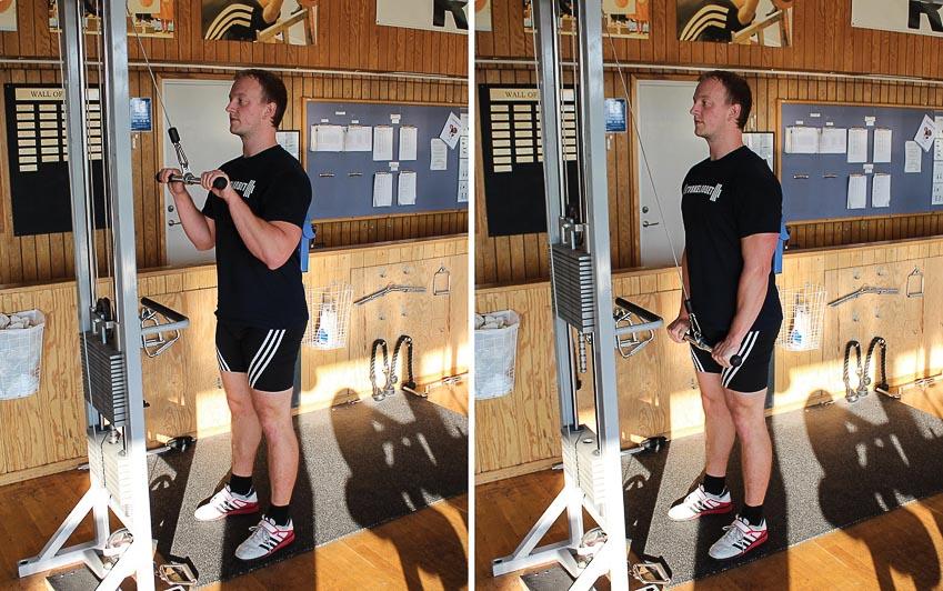 9 bài tập gym dành cho người mới bắt đầu 3