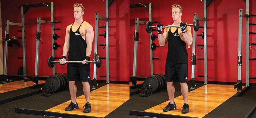 9 bài tập gym dành cho người mới bắt đầu 7