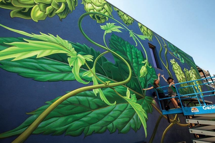 Mona Caron (trái) và một người bạn đang thực hiện tranh tường tại nhà máy bia Odell Brewing ở Denver, Colorado, tranh vẽ những hoa bia houblon khổng lồ