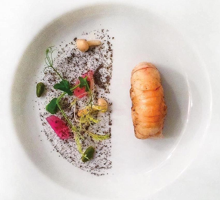 Tôm hùm Na Uy, patê gan ngỗng, nấm Nhật Hon Shimeji ngâm chua và xốt nấm đen Périgord