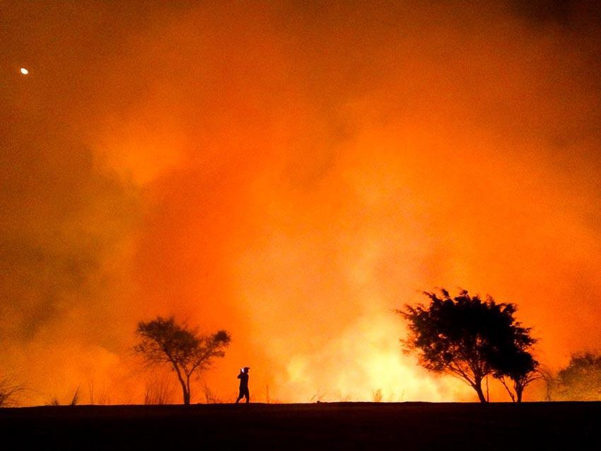 """""""The Heat"""" – Tác giả: Moises Silva/Chụp bằng iPhone 5S"""