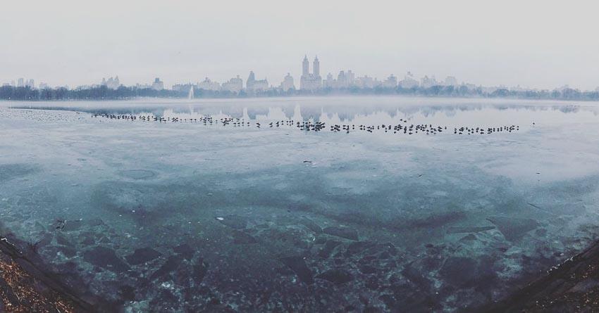 """Frozen Central Park"" – Tác giả: Burcu Ozturk / Chụp bằng iPhone 7"