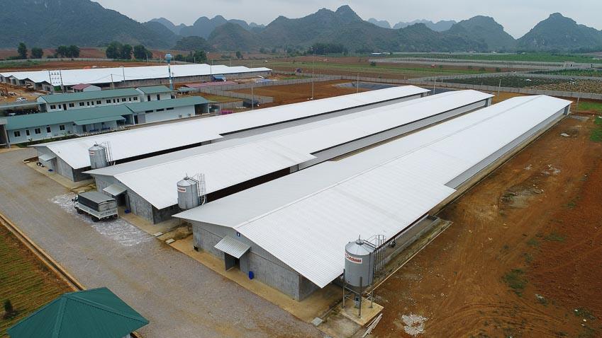 NS BlueScope Lysaght Việt Nam hợp tác với SKIOLD phát triển các giải pháp thông minh cho ngành chăn nuôi