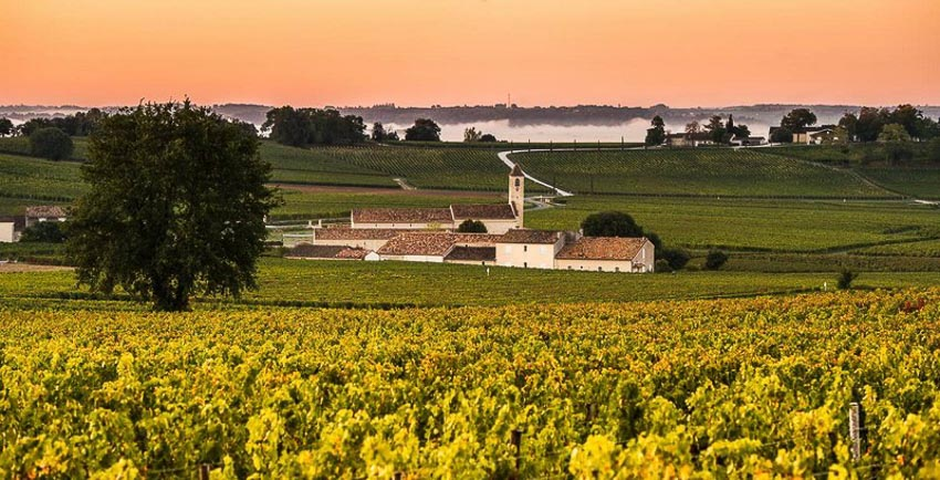 Thưởng thức thiên đường của rượu vang Bordeaux 2