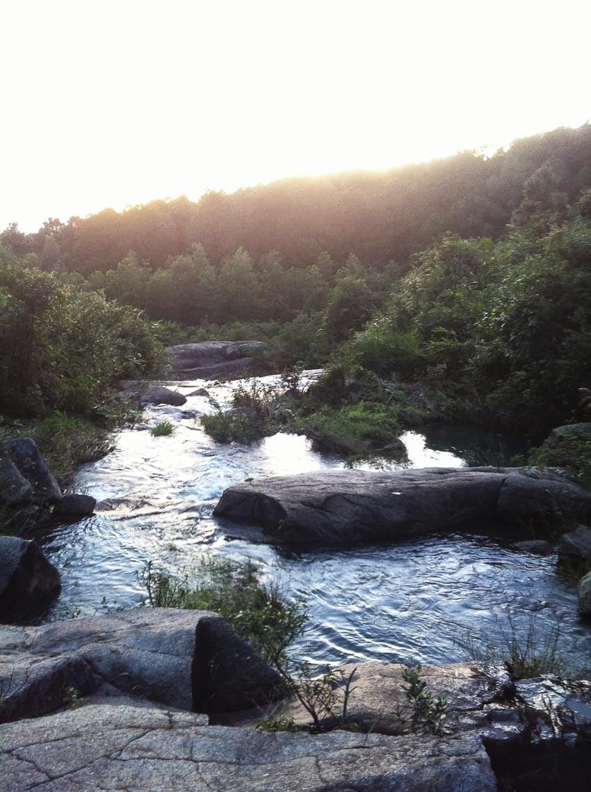 Suối rừng nguyên sơ trong dãy núi