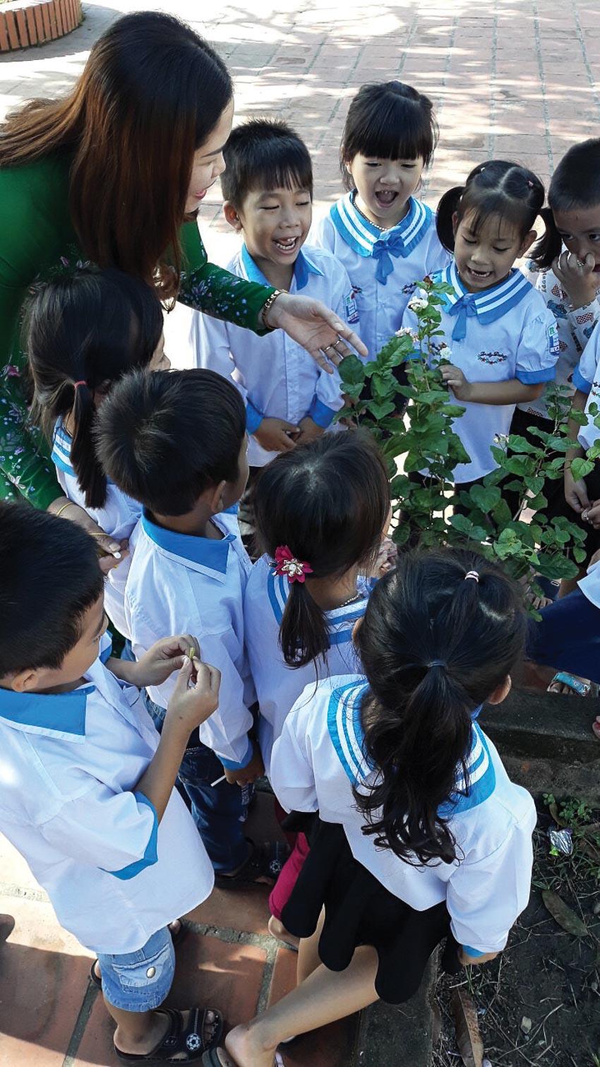 Một số trường học cố gắng đưa thiên nhiên đến gần học sinh