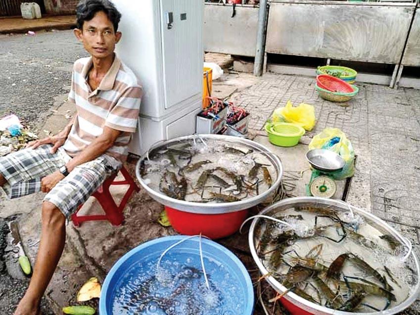 Một nông dân Việt Nam bán tôm do anh sản xuất tại Cần Thơ - Ảnh: Stella Paul, hãng tin IPS