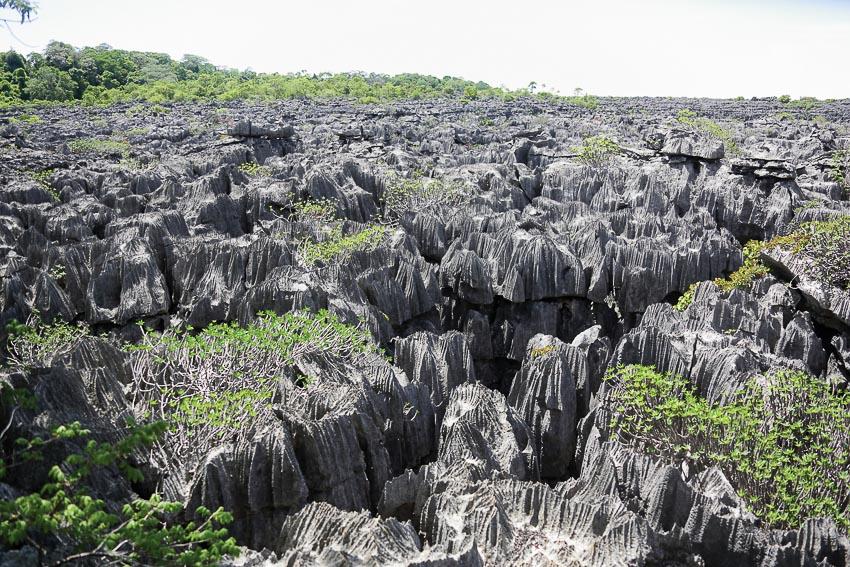 Rừng đá Tsingy nhìn từ trên cao