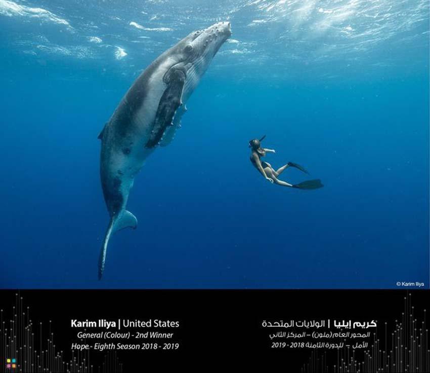 Nhiếp ảnh gia người Mỹ Karim Iliya đạt giải nhì hạng mục ảnh màu