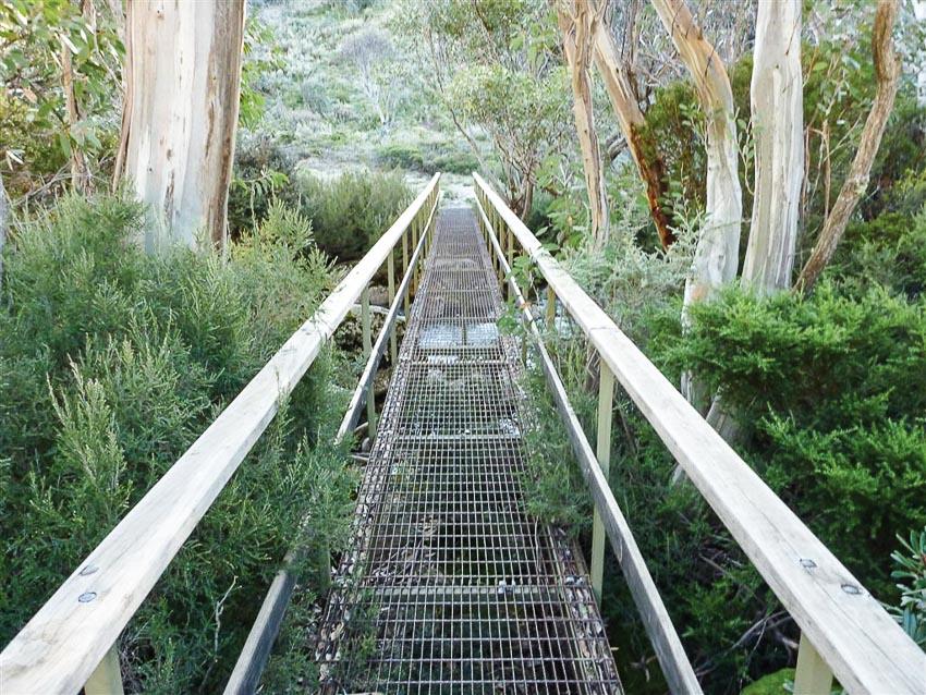 Lối đi bằng thép lưới để bảo vệ tối đa thảm thực vật trên núi